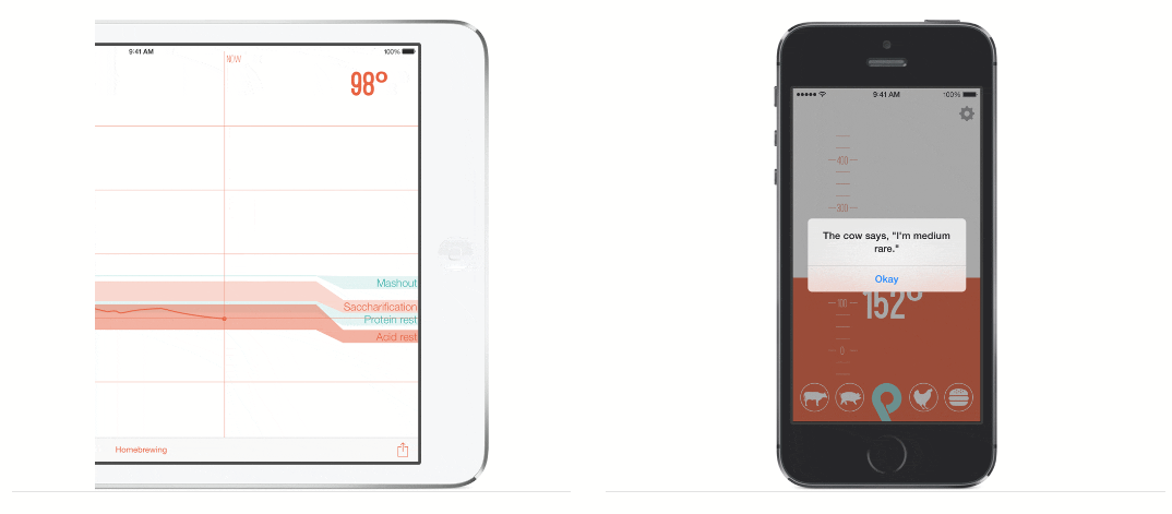 termómetro digital Range